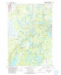 Topo map Tyonek C-1 NE Alaska