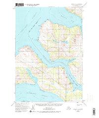 Topo map Afognak A-4 Alaska