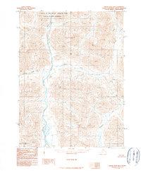 Topo map Ambler River B-2 Alaska