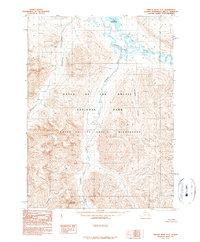 Topo map Ambler River C-1 Alaska