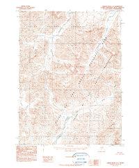 Topo map Ambler River C-2 Alaska