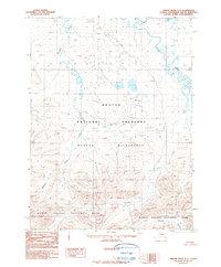 Topo map Ambler River C-5 Alaska