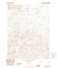 Topo map Ambler River C-6 Alaska