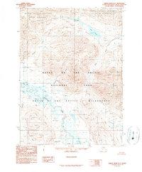 Topo map Ambler River D-1 Alaska