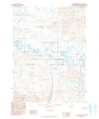 Topo map Ambler River D-2 Alaska