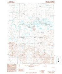 Topo map Ambler River D-3 Alaska