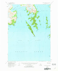Topo map Blying Sound C-8 Alaska