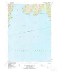 Topo map Blying Sound D-6 Alaska
