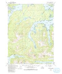 Topo map Craig B-2 Alaska