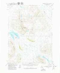 Topo map Goodnews Bay D-3 Alaska