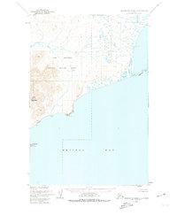 Topo map Hagemeister Island C-5 Alaska