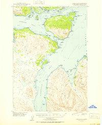 Topo map Kodiak D-3 Alaska