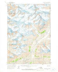 Topo map McCarthy A-1 Alaska