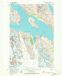 Topo map Mount Fairweather D-3 Alaska