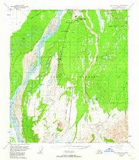 Topo map Mount Hayes D-4 Alaska