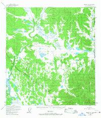 Topo map Nabesna D-1 Alaska
