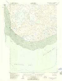 Topo map Nushagak Bay C-1 Alaska