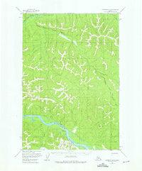 Topo map Sleetmute D-4 Alaska