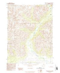 Topo map Survey Pass A-5 Alaska