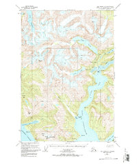 Topo map Taku River A-6 Alaska