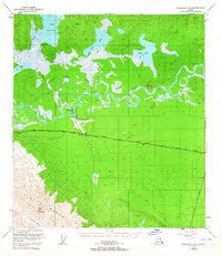 Topo map Tanacross B-5 Alaska