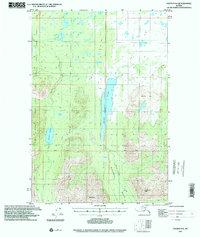 Topo map Valdez D-6 Alaska