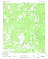 Download a high-resolution, GPS-compatible USGS topo map for Willisville, AR (1975 edition)