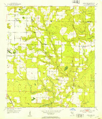 Download a high-resolution, GPS-compatible USGS topo map for Altha East, FL (1953 edition)