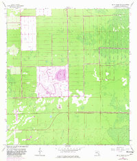 Download a high-resolution, GPS-compatible USGS topo map for Belle Meade NW, FL (1981 edition)
