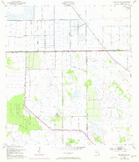 Download a high-resolution, GPS-compatible USGS topo map for Brighton NW, FL (1973 edition)