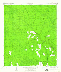 Download a high-resolution, GPS-compatible USGS topo map for Broad Branch, FL (1960 edition)