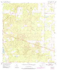 Download a high-resolution, GPS-compatible USGS topo map for Bronson NE, FL (1988 edition)