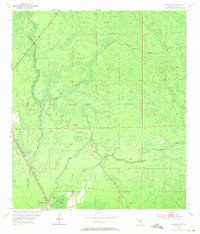 Download a high-resolution, GPS-compatible USGS topo map for Bronson SW, FL (1971 edition)