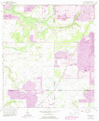 Download a high-resolution, GPS-compatible USGS topo map for Duette NE, FL (1988 edition)