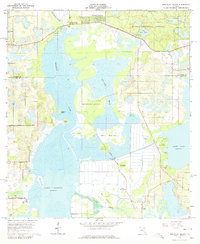 Download a high-resolution, GPS-compatible USGS topo map for Emeralda Island, FL (1979 edition)
