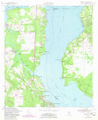 Download a high-resolution, GPS-compatible USGS topo map for Fleming Island, FL (1981 edition)