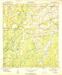 Download a high-resolution, GPS-compatible USGS topo map for Izagora, FL (1950 edition)