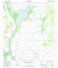 Download a high-resolution, GPS-compatible USGS topo map for Lake Arbuckle SE, FL (1993 edition)