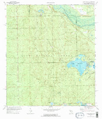 Download a high-resolution, GPS-compatible USGS topo map for Lake Delancy, FL (1973 edition)