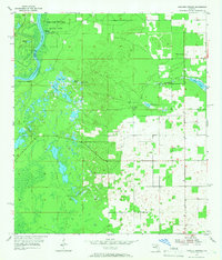 Download a high-resolution, GPS-compatible USGS topo map for Manatee Springs, FL (1966 edition)