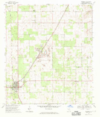 Download a high-resolution, GPS-compatible USGS topo map for Newberry, FL (1970 edition)