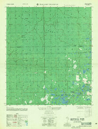 Download a high-resolution, GPS-compatible USGS topo map for Mallory Swamp SE, FL (1956 edition)
