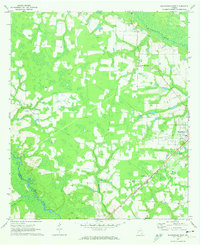 Download a high-resolution, GPS-compatible USGS topo map for Blackshear East, GA (1974 edition)
