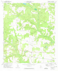 Download a high-resolution, GPS-compatible USGS topo map for Brooksville, GA (1974 edition)
