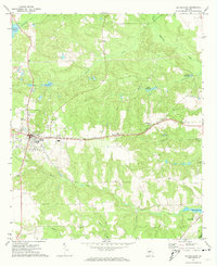 Download a high-resolution, GPS-compatible USGS topo map for Butler East, GA (1974 edition)