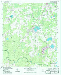 Download a high-resolution, GPS-compatible USGS topo map for Clyattville, GA (1998 edition)