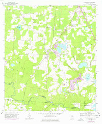 Download a high-resolution, GPS-compatible USGS topo map for Clyattville, GA (1978 edition)