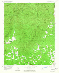 Download a high-resolution, GPS-compatible USGS topo map for Cowrock, GA (1965 edition)