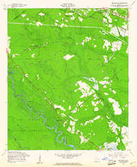 Download a high-resolution, GPS-compatible USGS topo map for Meldrim SE, GA (1961 edition)