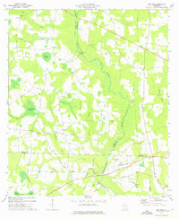 Download a high-resolution, GPS-compatible USGS topo map for New Lois, GA (1975 edition)
